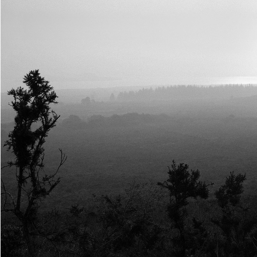 Monts Arree 04