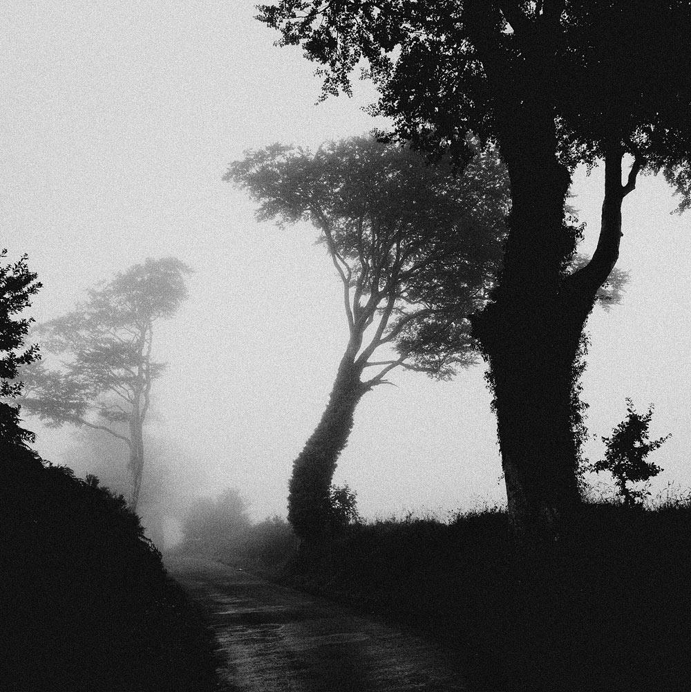 Monts d'Arrée sous la brume