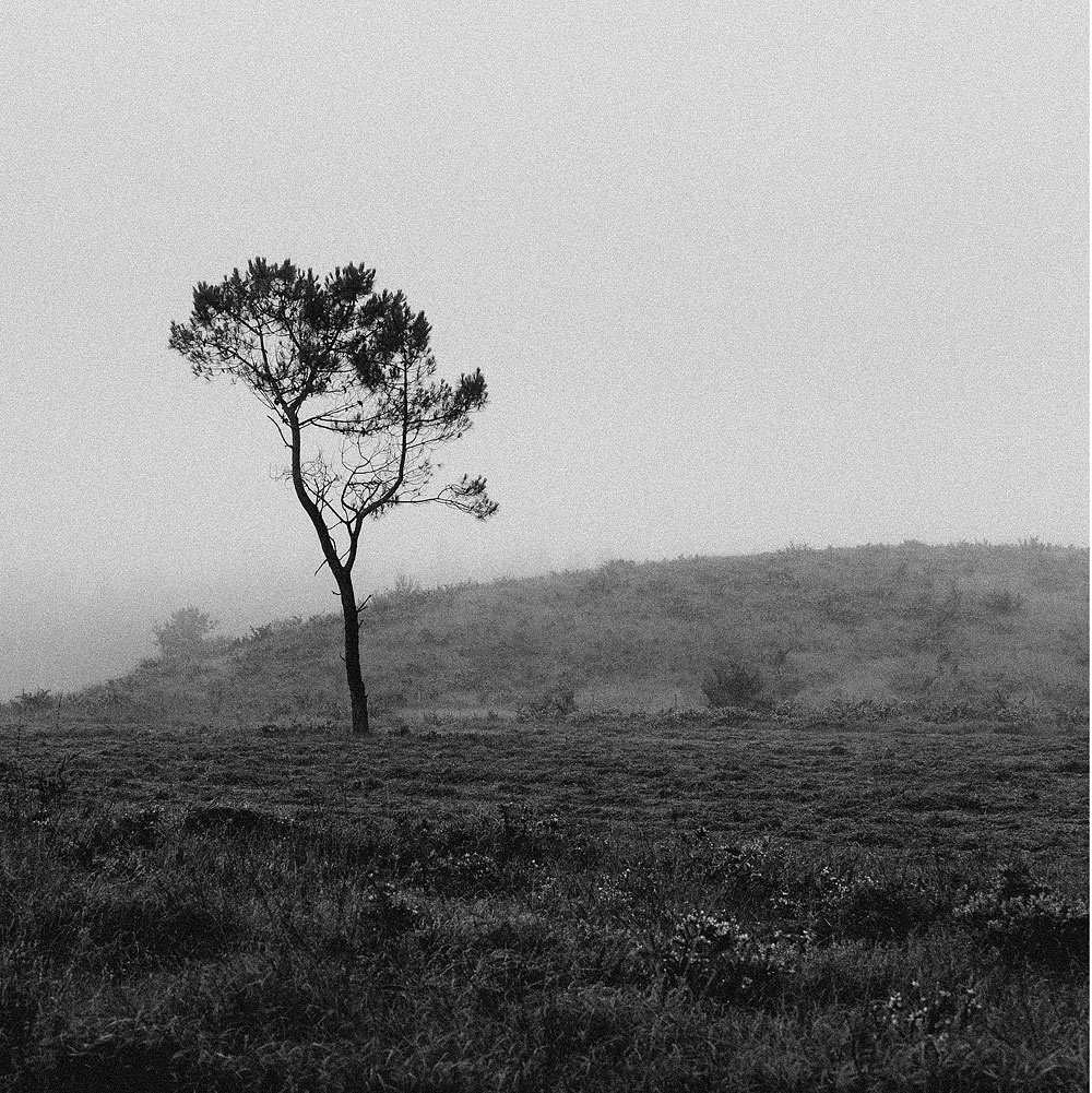 Monts d'Arrée noir et blanc